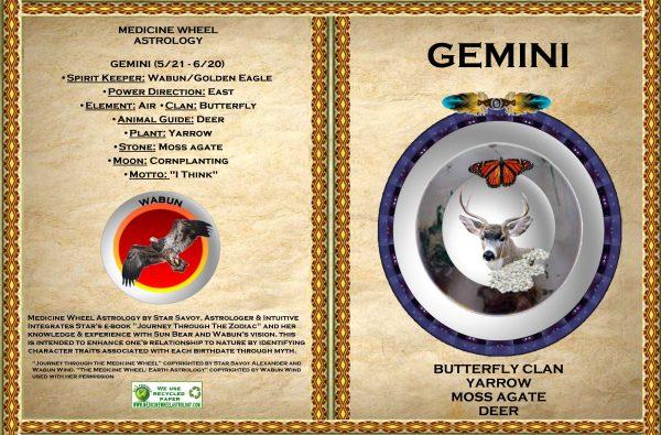 gemini-GC